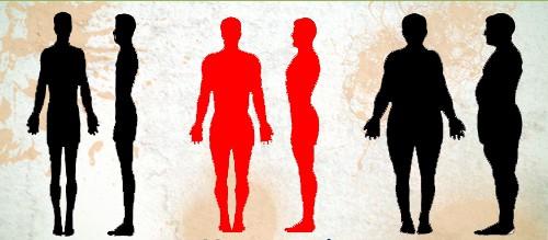 Biotipo Mesomorfo